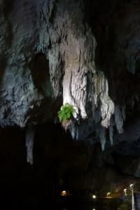 Italien, Sardinien - Grotte Bue Marino