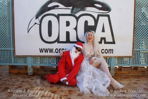 Medusa Ramona und Santa Claus im Orca Dive Club Soma Bay